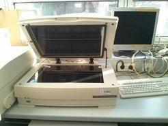 <strong>Gel Scanners</strong> <p>1D SDS-PAGE and 2D-PAGE gel image acquisition. In combination with Quantity One and PD Quest<sup>TM </sup>softwares used for relative protein quantification. Fluorescent scanner FX-imager / Densitometer GS-800.</p>